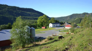 Storkvikne gård - gårdsutsalg